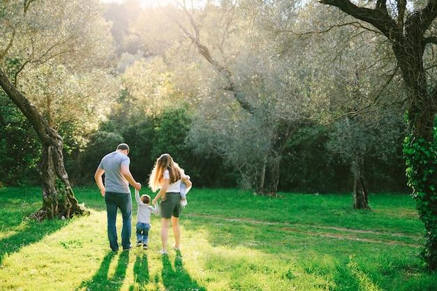 Una famiglia di quattro persone sta facendo una passeggiata sotto gli ulivi