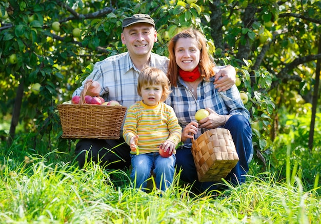 La famiglia nel giardino raccoglie le mele