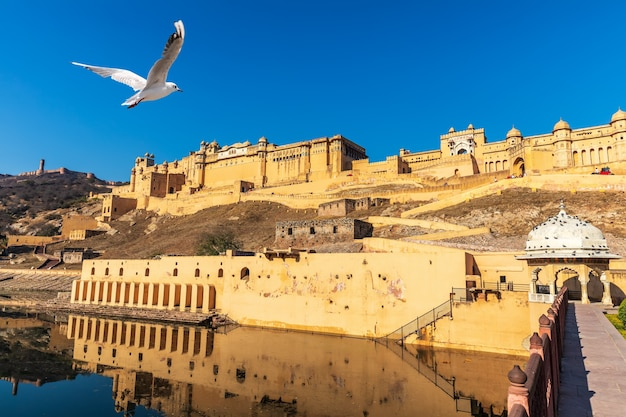 Famoso forte amber a jaipur, splendida vista giorno, india.