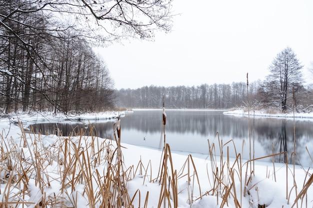 Famosi laghi blu di origine carsica. i laghi blu non si congelano in inverno e si nutrono di acque sotterranee. i laghi d'acqua e di fango stanno guarendo da una varietà di malattie. laghi russia, kazan. paesaggio invernale.