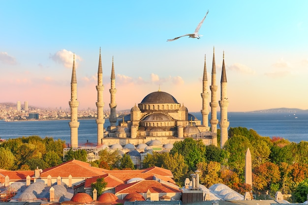 Famosa moschea del sultano ahmet o la moschea blu, uno dei luoghi più conosciuti di istanbul.