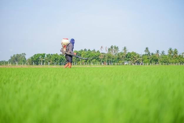 Un agricoltore che trasporta uno spruzzatore di fertilizzanti chimici sta camminando nel campo con il cielo blu