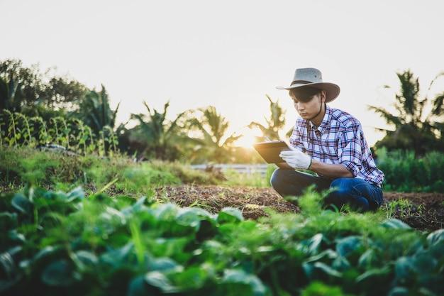 L'agricoltore controlla la qualità dei dati nel suo terreno agricolo utilizzando la tavoletta digitale