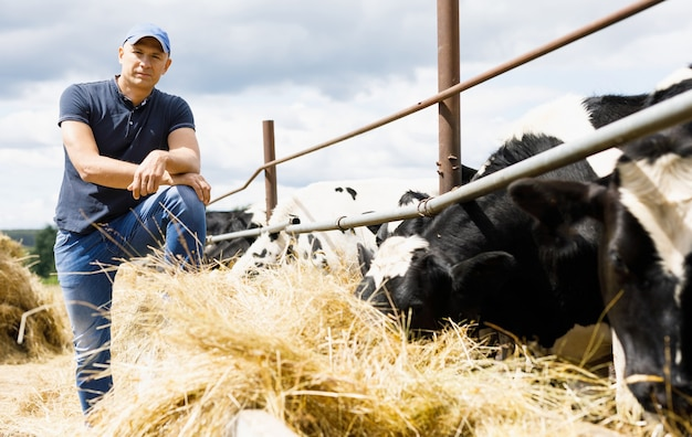 Contadino in fattoria con mucche da latte