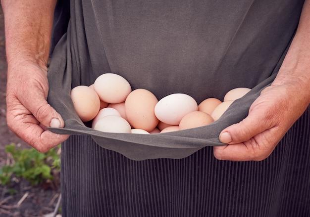 Agricoltore che tiene le uova biologiche fresche