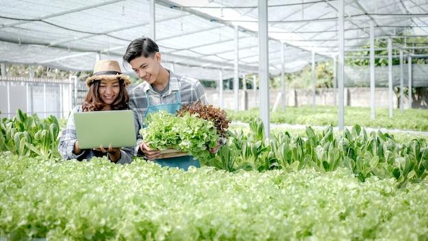 L'agricoltore controlla la qualità dell'insalata e della lattuga organiche di verdure dalla fattoria idroponica e registra nel laptop