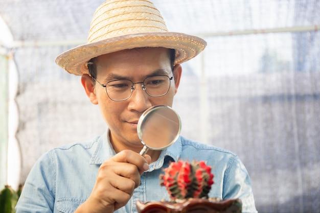Uomo del coltivatore che osserva tramite una lente d'ingrandimento al cactus, giovane agricoltore che tiene una lente d'ingrandimento