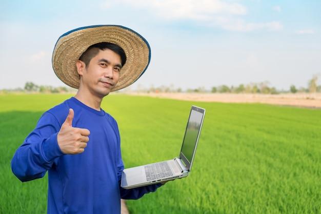 Cappello di usura dell'uomo dell'agricoltore facendo uso del computer portatile e del pollice sulla mano che sta sul giacimento verde del riso.