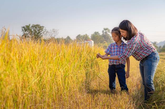 La madre contadina e sua figlia ammiravano le risaie giallo oro pronte per la mietitura