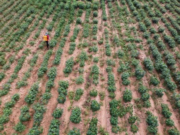 L'agricoltore spruzza pesticidi tossici sui terreni agricoli.