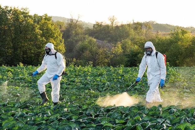 Farmer spruzzando maschera da campo di pesticidi raccolto chimico protettivo