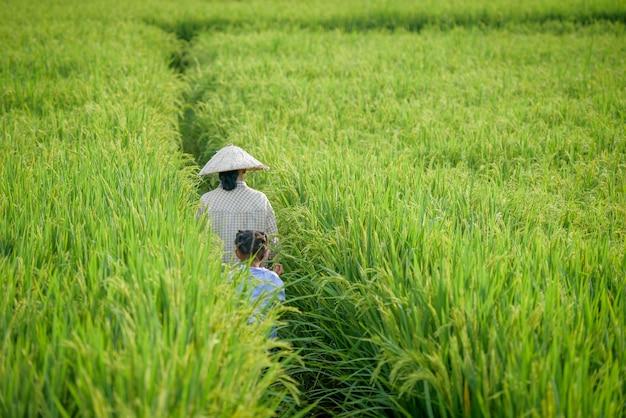Un contadino che indossa un cappello vietnamita