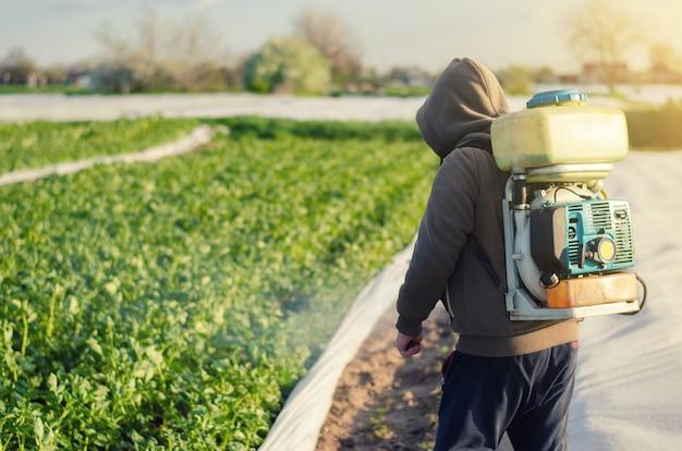 Un agricoltore con uno spruzzatore tratta una piantagione di patate con un agente di parassiti e funghi protezione delle colture