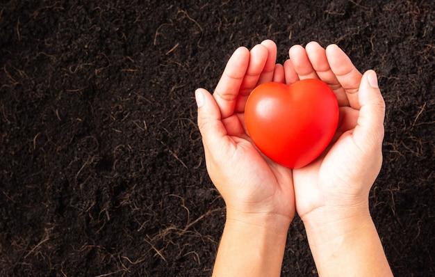 Mano della donna del coltivatore che tiene cuore rosso sul terreno nero fertile della composta
