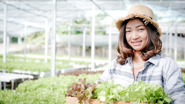 La donna dell'agricoltore raccoglie un'insalata biologica di verdure, lattuga da una fattoria idroponica.