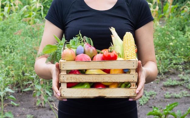 Donna del coltivatore che tiene la scatola di legno piena di frutta e verdura dal suo orto biologico. raccolta del concetto di prodotti nostrani