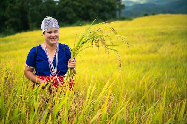 Coltivatore donna raccolto di riso nel nord della thailandia