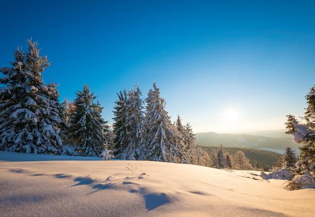 Affascinante paesaggio pittoresco del pendio ricoperto di boschetti boschivi sullo sfondo di catene montuose e tramonto rosa contro un cielo blu