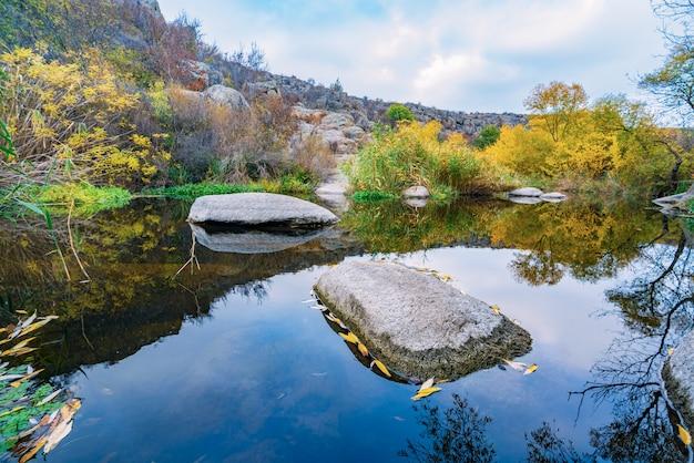 Un ruscello veloce, poco profondo e pulito scorre tra grandi pietre lisce e bagnate circondate da alti grumi secchi