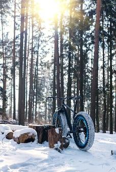 Fatbike nella foresta invernale in una giornata di sole