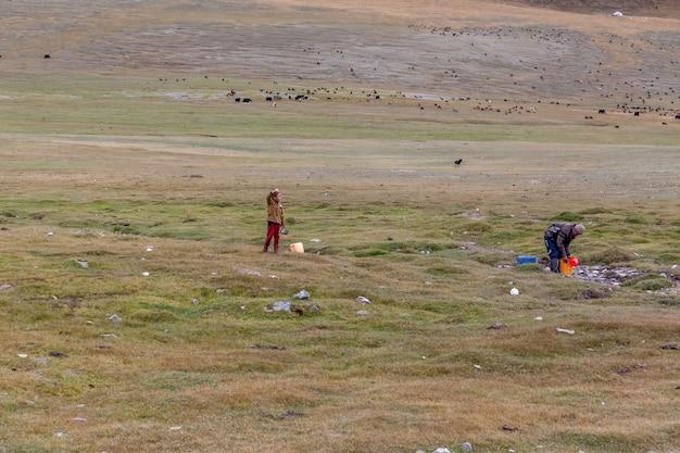 Padre e figlio prendono l'acqua in un secchio da un piccolo fiume. mandria di pecore yak e tori in background