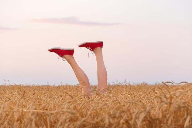 Piedi in scarpe da ginnastica rosse che attaccano da un campo di grano. gambe sul campo e sullo sfondo del cielo.
