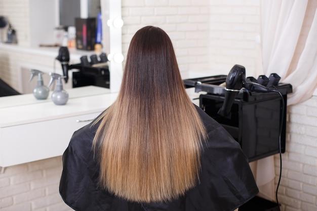 Parte posteriore femminile con capelli castani lunghi e lisci