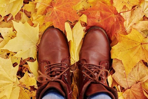 Stivali femminili sulle foglie d'autunno dell'acero
