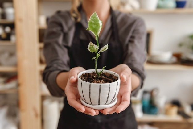 Ceramista femmina in piedi in ceramica studio azienda pianta.