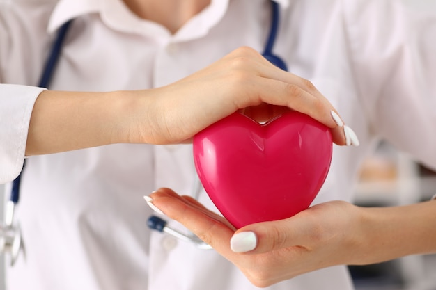 Mani femminili del medico che tengono bello cuore rosso