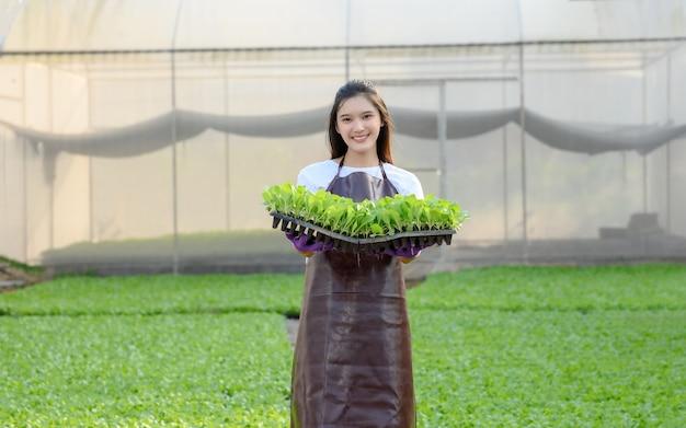 Coltivatore femminile con ortaggi biologici raccolti in una serra