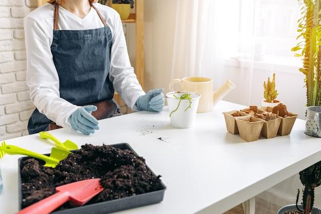 Giardiniere femminile che si prende cura delle sue piante al chiuso si chiuda