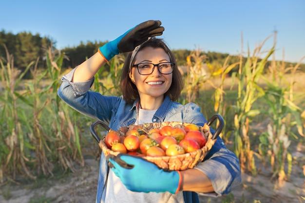 Giardiniere femminile in orto con cesto di pomodori maturi. hobby, giardinaggio, coltivazione di verdure biologiche nel giardino di casa, cibo naturale sano, spazio per le copie