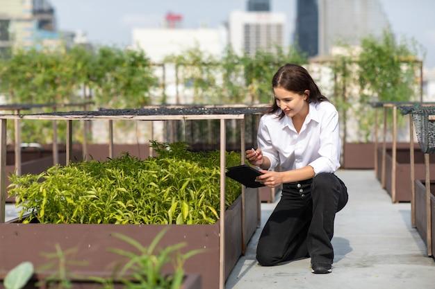 Della giardiniera che lavora nell'orto sul tetto dell'edificio moderno modern