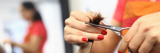 Parrucchiere femminile tenere in mano ciocca di capelli closeup. concetto di cura dei capelli sani di bellezza