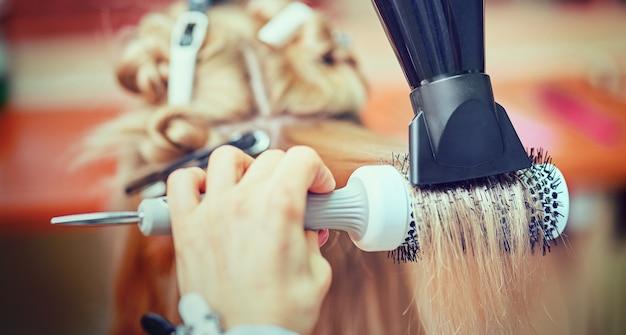Parrucchiere femminile che utilizza spazzola per capelli e asciugacapelli