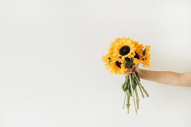 Mazzo di girasoli gialli della stretta della mano femminile su bianco