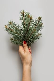 Rami femminili dell'albero di natale della tenuta della mano su gray. biglietto di auguri di natale.