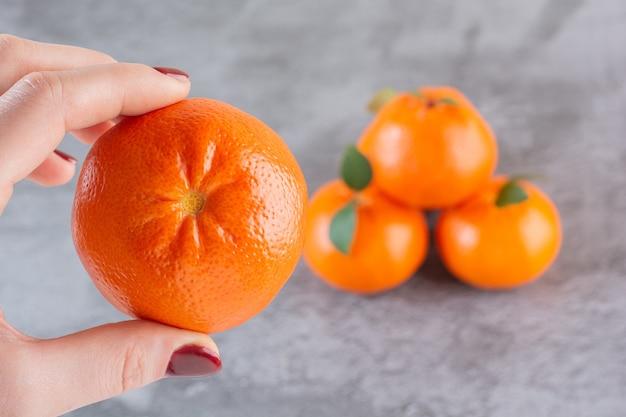 Mano femminile che tiene mandarino organico fresco.