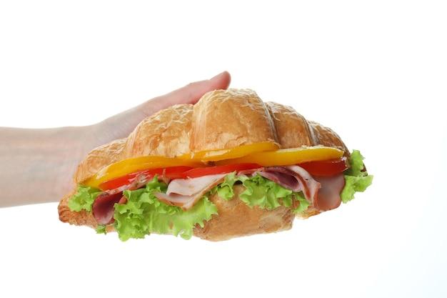 La mano femminile tiene il panino del croissant, isolato su bianco