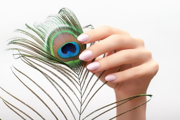 Mano femminile con unghie rosa design tenendo la piuma di pavone.
