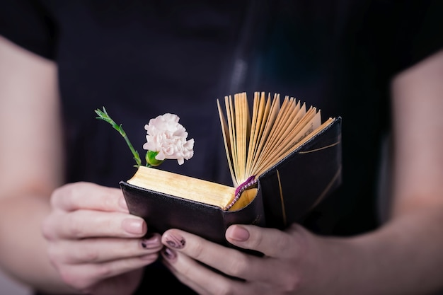 Mani femminili che tengono aperto vecchio libro e garofano rosa fiore
