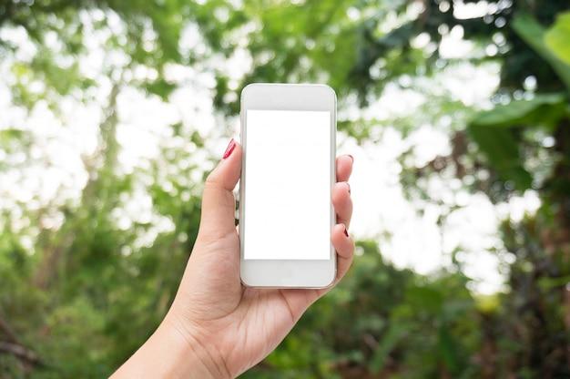 Mani femminili che prendono foto con lo smart phone del touch screen bianco in bianco, foresta della natura di vista frontale