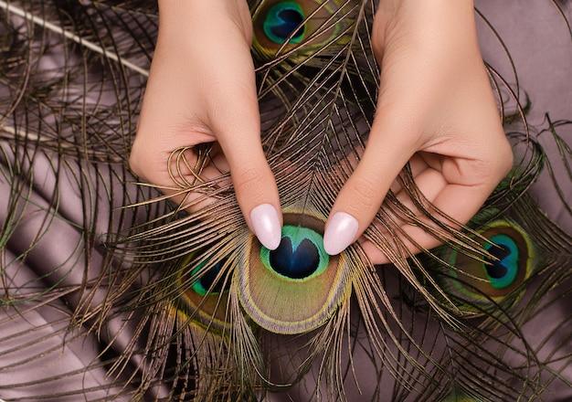 Mani femminili con unghie rosa disegni tenendo la piuma di pavone.