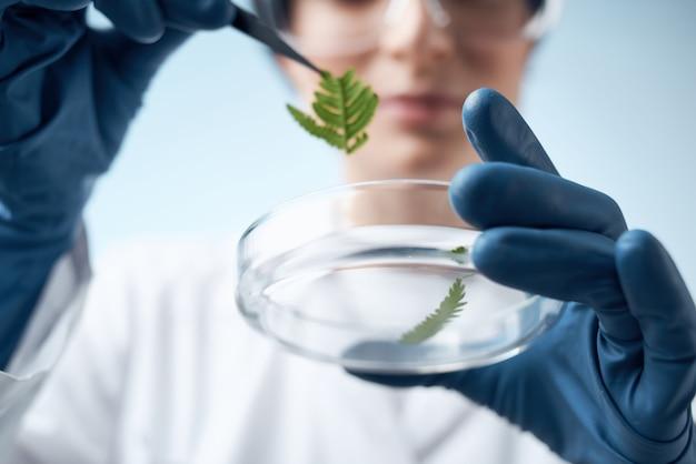 Assistente di laboratorio femminile nel lavoro scientifico di microbiologia in camice bianco