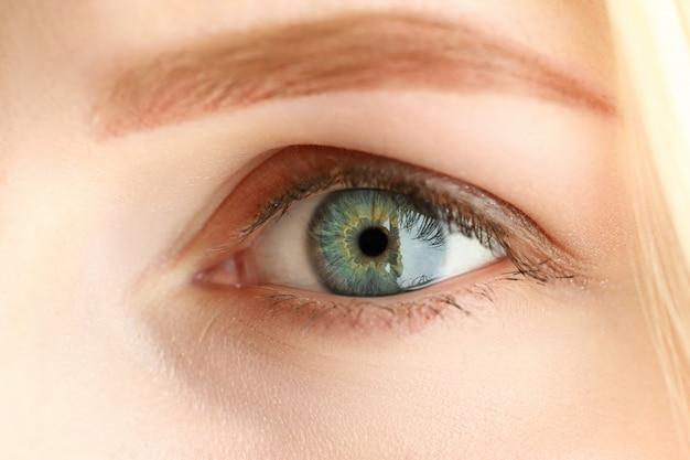 Occhio stupefacente colorato verde grigio sinistro femminile