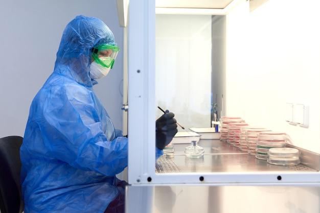 Ricercatore scientifico femminile in uniforme protettiva e attrezzature lavora con capsula di petri in laboratorio