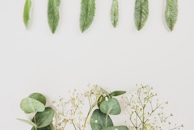 Matrimonio femminile in stile desktop mockup di cancelleria scena.gypsophila fiori, foglie di eucalipto verde secco su sfondo bianco. lay piatto, in alto