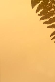 Ombra di felce su fondo beige. sfondo verticale con copia spazio