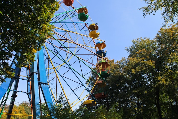 Ruota panoramica in un parco